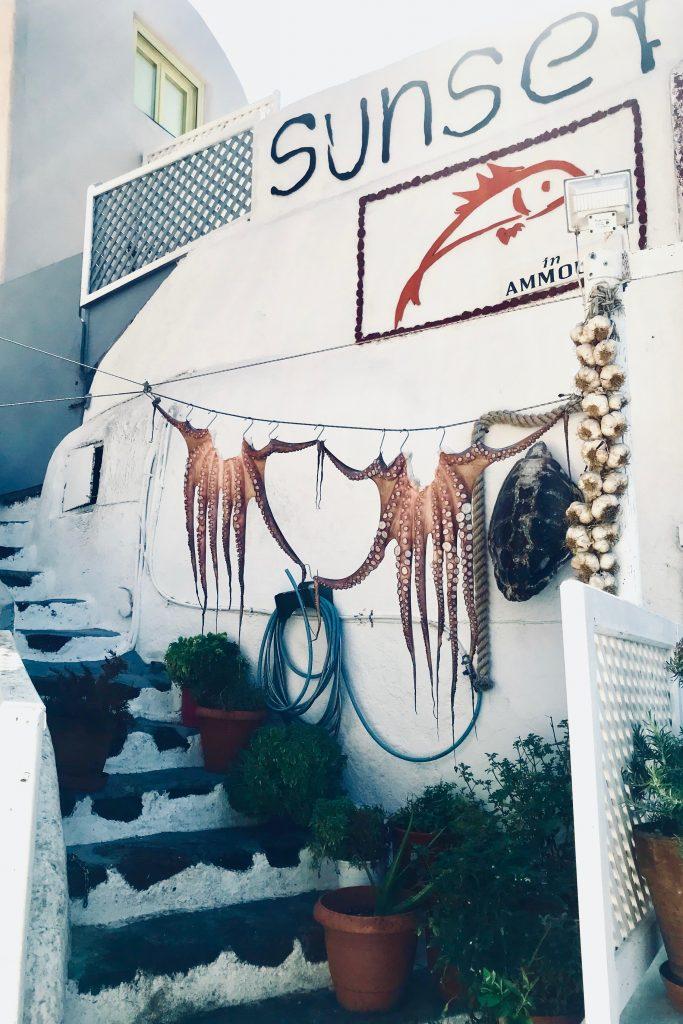 Les poulpes qui sèchent au port d'Amoudi Bay