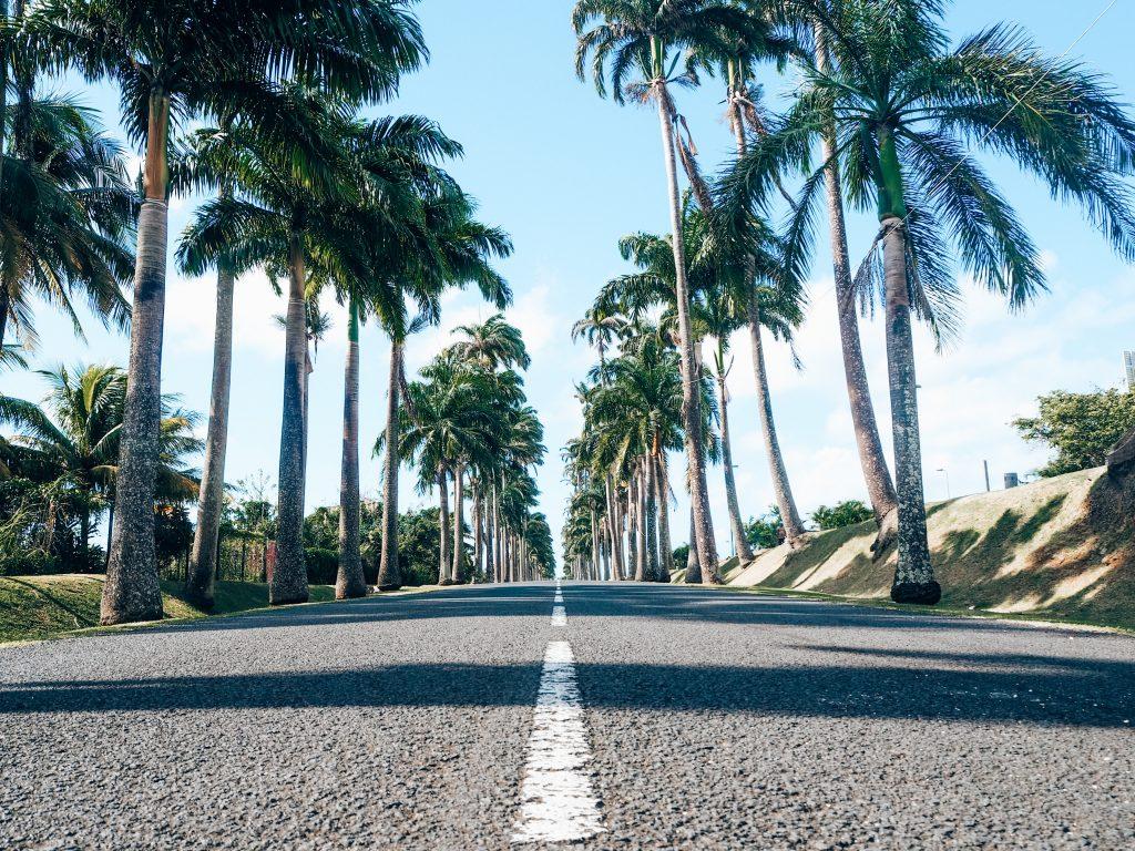 Allé dumanoir - Basse-Terre