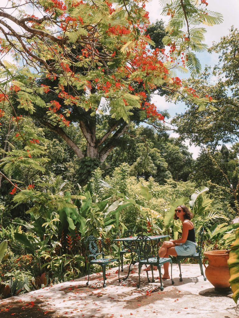 Jardin de valombreuse