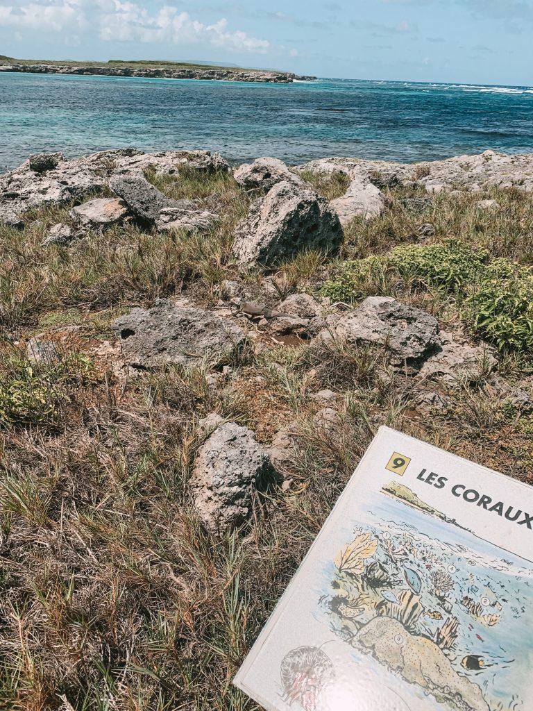 Sentier découverte Petite Terre