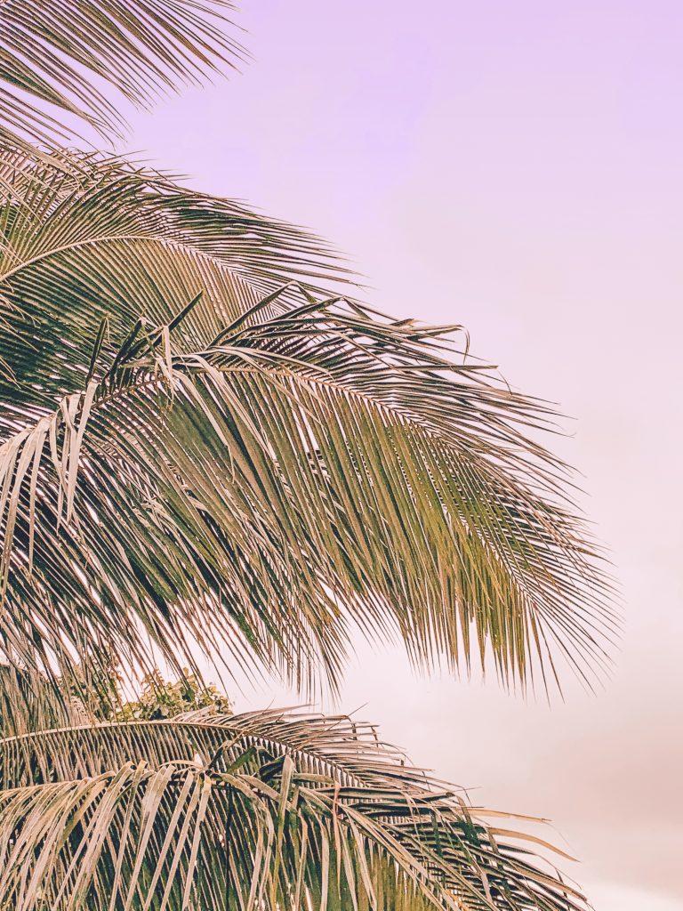 Décor Guadeloupe