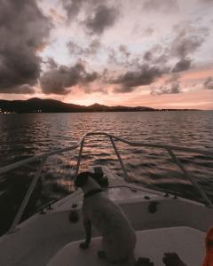 Coucher de soleil sur le Grand cul-de-sac marin
