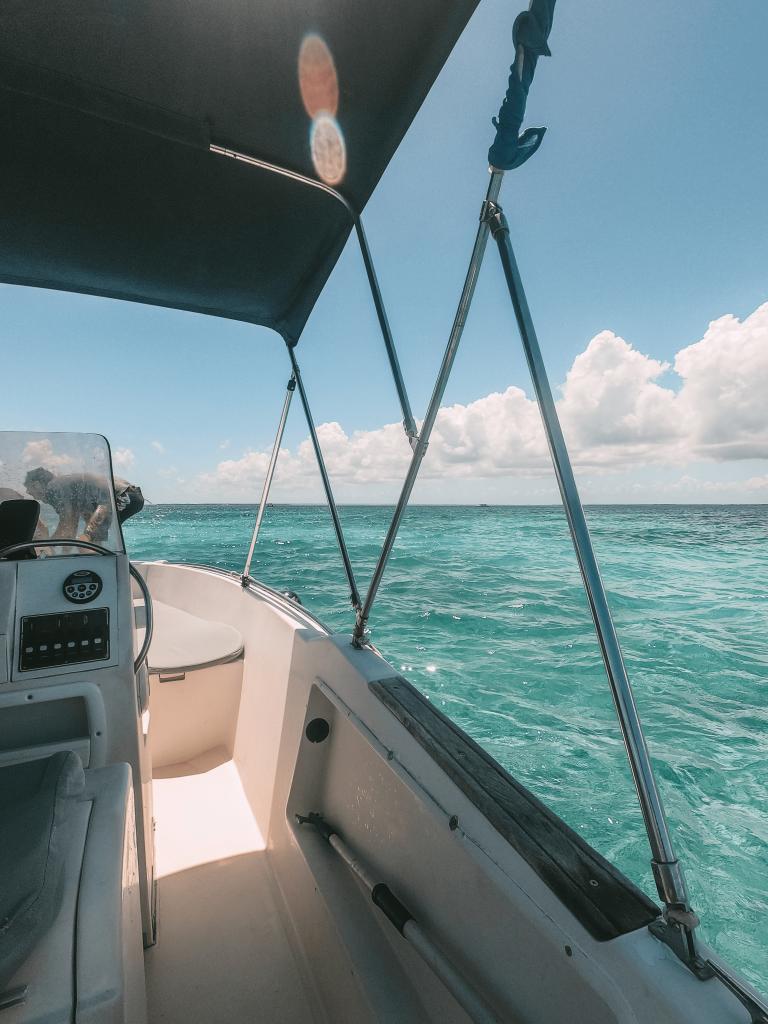 Excursion en bateau avec Gwadaboat dans le Grand cul-de-sac marin
