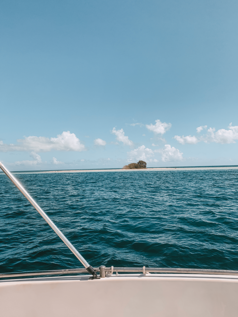Ilet Blanc - Grand cul-de-sac marin