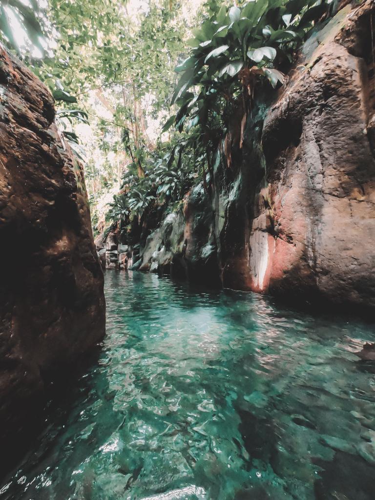 Canyon Moustique